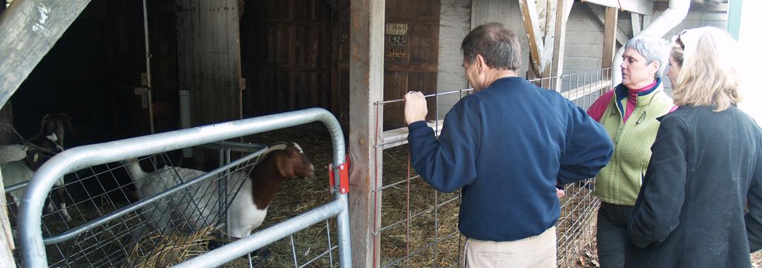 Mackenzie Creamery: Goats & Dad, Jean, Mom