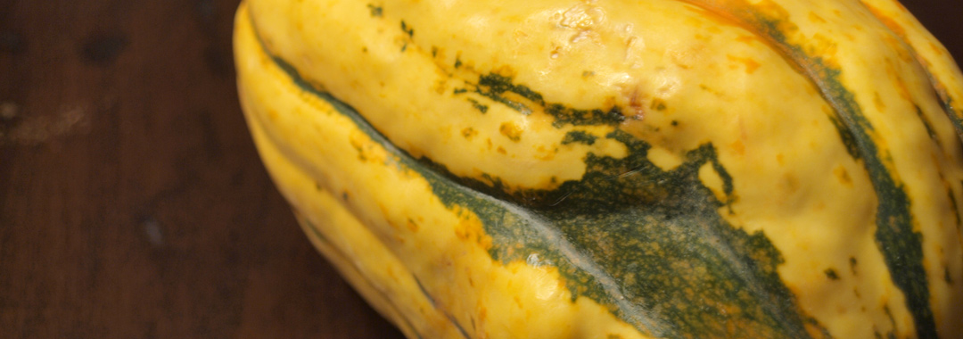 Delicata Squash Grilled Cheese: Delicata Squash