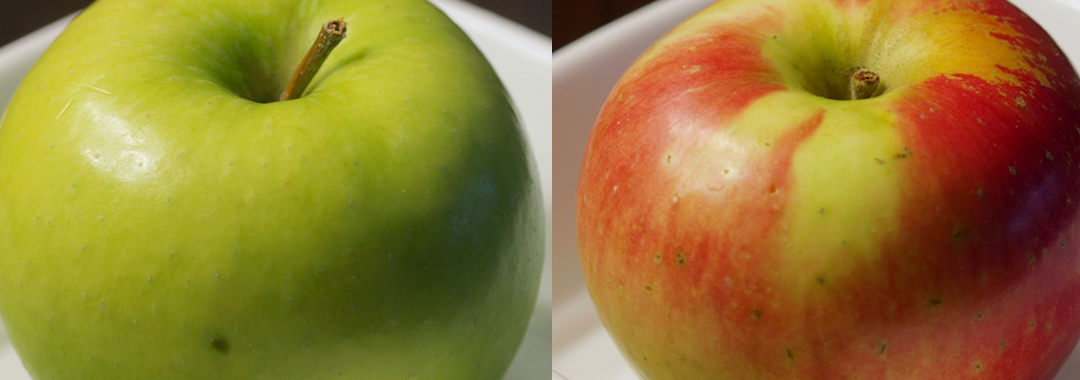 Le Merlemont Grilled Cheese: Zestar & Ginger Gold Apples