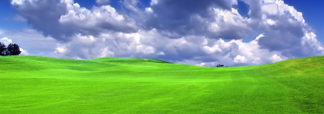 The grass is greener.